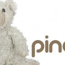 pinchopin-google-partner